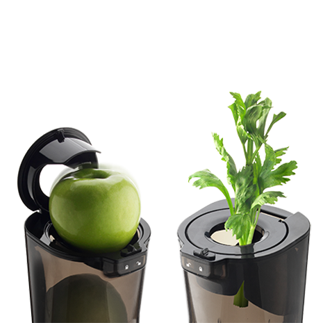 Apple and Cellery in EVO820 Juicer